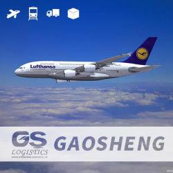 DHL/TNT/UPS/EMS Agent de fret aérien/Transitaire/logistique/fret/Service de livraison de la Chine à la Suède/Stockholm