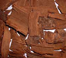 Pygeum extrait de l'écorce
