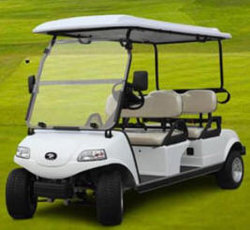 Elektrisches Golf-Auto/Karre/Buggy, besichtigenauto, Gebrauchsfahrzeug (DEL3042G, 4-Seater)