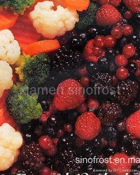 IQF frutas congeladas de frutas de bagas IQF, congelado bagas, puré de frutas congeladas, Puré de frutinhas congeladas