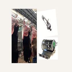 Linha de abate de bovinos a Linha de Sangramento Evisceração Pre-Cooling equipamentos do matadouro