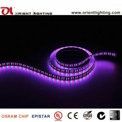 UL Ce Double Ligne/M 240LED SMD1210 RGBA Bande LED lumière