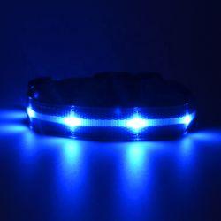 Noite intermitente de segurança que brilha no escuro Pet Nylon trela levou Coleira Acessórios Pet