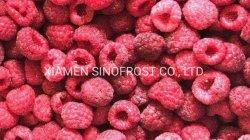 IQF 나무 딸기 Wholes 의 IQF 빨강 나무 딸기 Wholes, IQF는 빨강 나무 딸기, 언 나무 딸기, 언 나무 딸기, 빨강, Wholes/Brokens/Crumbles를 경작했다