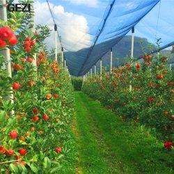 Защита от насекомых Gezi Net, цветы в саду овощи защиты взаимозачет расти Мелкая сетка из туннеля для растений фрукты, сад взаимозачет садовых Anti-Bird Anti-Insect