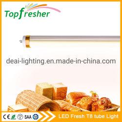 مصباح LED في لامبيدا T8 60 سم 2 قدم من Para Panaderia