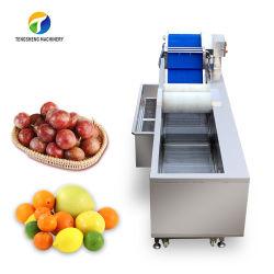 جهاز نقل الحرارة الصناعي جهاز نقل الحرارة الغسل النباتي جهاز غسل الأوزون TS-X300m