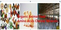 O cobalto Aminoácidos Quelatado aditivo orgânico