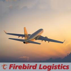 خدمة لوجيستية لشركة الشحن من شينزين إلى كيلانج ماليزيا