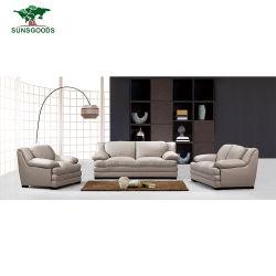 Usine de cuir de gros Nice design canapé mobilier de maison à vendre