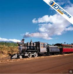 وكيل خدمة الشحن البحري من FCL/LCL إلى /Dominican/Guatemala/Columbia