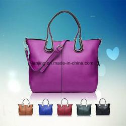 Bw1-009 Coreano de moda bolso mujer bolsos señoras OEM