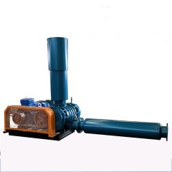 Les soufflantes d'air rotatif en fonte pour le traitement des eaux usées souterrain
