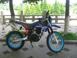 250cc 4 tiempos de gran potencia Pit Bike con ruedas de 17 pulgadas