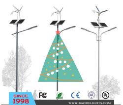 Marché américain le vent solaire Rue lumière LED hybride (BDTYN2-4)
