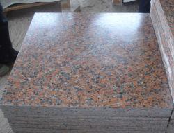 Ahornholz-roter Innenwand-Fliese-Granit-Natur-Stein China-G562