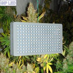 GIP 5W Chips 900W 1000W 12-Band LED Grow Light