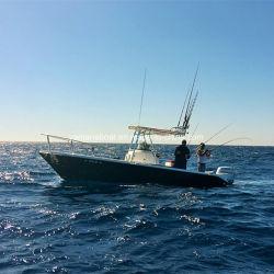 7,2 Offshore rápido barco pesquero de fibra de vidrio del nuevo modelo
