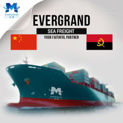 Berufsseefracht-Verschiffen-Service nach Angola von Guangzhou/von Shenzhen/von Xiamen/von Hong Kong