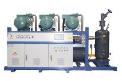 BerufsBitzer Schraube, die den parallelen Kompressor kondensiert für Kühlsystem hin- und herbewegt