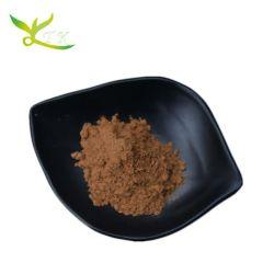 아르모라시아 러스티카나 추출물/서양 고추냉이 분말료/와사비 분말