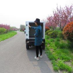 La logística de la ciudad CEE L6e de carretillas eléctricas recoger el vehículo eléctrico coche eléctrico de los alimentos