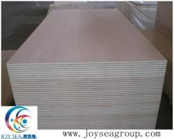 Panneau de paroi 18 mm Matériaux de construction bon marché pour les meubles de contreplaqué commercial