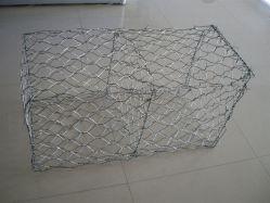 Grillage hexagonal galvanisé Gabion / boîte de gabions