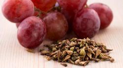 De Hulp van Extarct van het Zaad van de druif met de Ziekte van het Oog Met betrekking tot Diabetes
