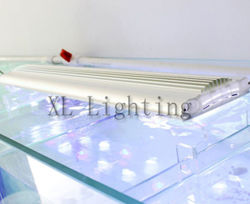 Luz de aquário LED 120W 5 pés (XL-S150-ABW.)