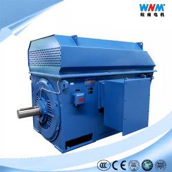 Motore medio asincrono di tensione del dispositivo di raffreddamento di aria dell'aria della gabbia di scoiattolo di induzione di CA di Ykk IC611 6kv 10kv per il metallo marino Ykk355-2 250kw 2990rpm del gas dell'olio dello zucchero del cemento