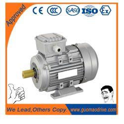 中国の製造者IEC線形ACモーターギヤ電気モーター