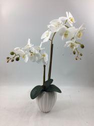 Grosse Größen-künstliche Orchidee pflanzt nach Hause/Büro/Hochzeits-Dekoration