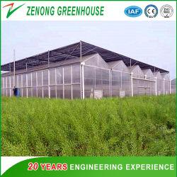 Современный дизайн пластиковый / стеклянная парниковых / многофункциональная парниковых / легких стальных парниковых