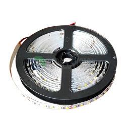 Intense lumière de bande flexible du luminosité 240LEDs/M DEL avec la qualité SMD2835