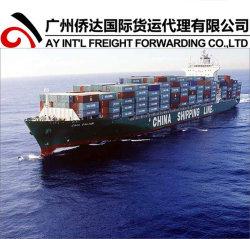 Trasporto di mare, consolidamento di trasporto del mare dalla Cina a Helsingo