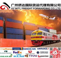 Verschepen/de Container die van de Luchtvracht aan Alberta van Guangzhou, Xiamen, Shenzhen verschepen