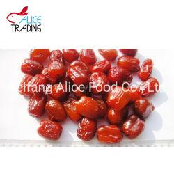 Conservas de frutos secos de Fornecedor Datas Chinês