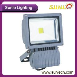 Commerce de gros 30W à LED de plein air des feux de route projecteur (SLEFLE 30N)