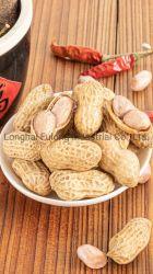 Замороженные продукты арахиса IQF замороженные арахис