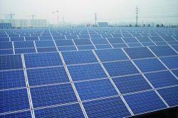 240W Multicrystal Painéis Solares (TUV, IEC, CE)