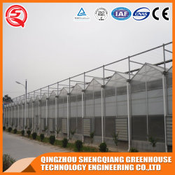 Aluminio transparente PC/poli-carbonato jardín hidropónico de efecto invernadero a la venta