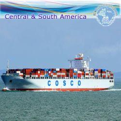 Agente di trasporto internazionale dell'oceano, servizio del magazzino & spedizioniere di trasporto (FCL 20 '' 40 '')