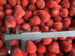 Congelado IQF deliciosas fresas frescas rojo