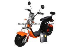 Cee la certificación CE Adulto Scooter motocicleta eléctrica 2 asientos