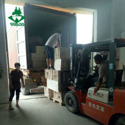 الصين ممون شجرة بلزا قوالب خشبيّة [بلسا ووود] لأنّ عمليّة بيع