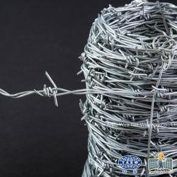Fer galvanisé recouvert de PVC pour la prison de barbelés clôture de sécurité