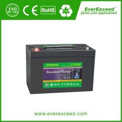 Everexceed gama estándar de 12V 28Ah UPS/ Telecom AGM Pilas Recargables de Plomo-ácido de batería VRLA