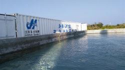 La ósmosis inversa RO Purificador de agua tratamiento para la acuicultura