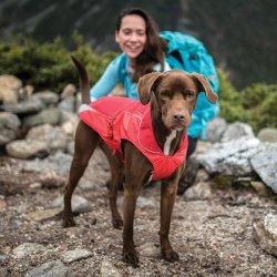 Het Jasje van de Winter van de hond past Honden van Alle Grootte met het Duurzame die Materiaal van het scheuren-Einde voor de Dekking van Drie Seizoen wordt gemaakt terwijl het Toestaan voor Natuurlijke Beweging